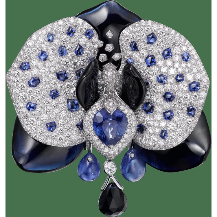 Caresse d'Orchidées par Cartier胸针 18K白金