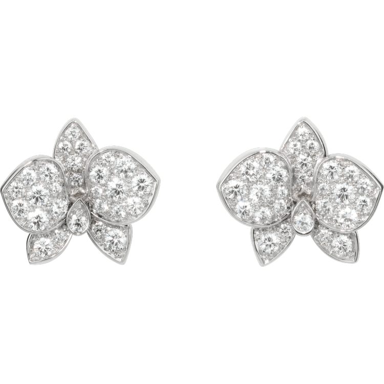 Caresse d'Orchidées par Cartier耳环 18K白金